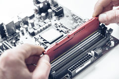 Computer memory installation Royalty Free Stock Image