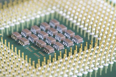 Computer micro processor Stock Images