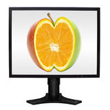 Computer monitor Royalty Free Stock Photo