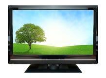 Computer-Monitorwiesenschirm Getrennt auf weißem Hintergrund Stockbild