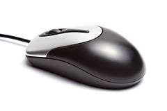 Computer mouse. Isolated on a white background stock image