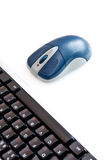 Computer mouse. Background can use the Internet, print advertising and design Royalty Free Stock Photos