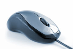 Computer mouse Stock Image