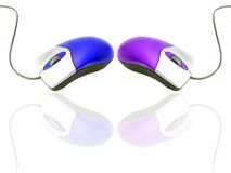 Computer mouse. Blue and purple computer mice isolated on white Stock Image