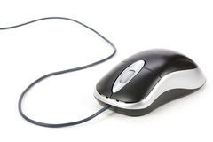 Computer Mouse. With white background royalty free stock images