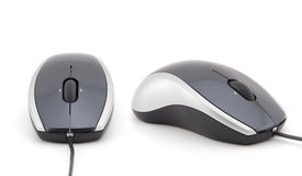 Computer mouse. On white background royalty free stock photo