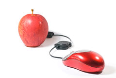 Computer Mouse and apple. Computer Mouse and red apple on white background royalty free stock photography