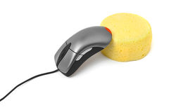 Computer mouse and cheese Royalty Free Stock Photo