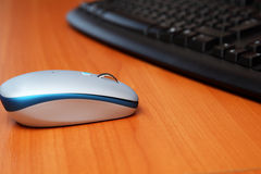 Computer mouse with the keyboard Royalty Free Stock Image