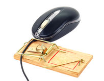 Computer mouse and mousetrap. Back computer mouse and mousetrap isolated on white background Royalty Free Stock Photos