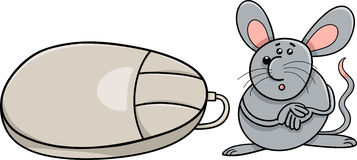 Computer mouse and real rodent cartoon Stock Images