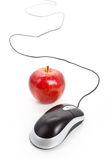 Computer Mouse and red apple stock photos