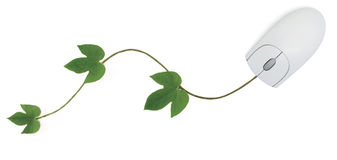 Computer Mouse and Vine. A three-button computer mouse with a green vine as its cord symbolizing concepts from convergence of digital and green technologies to Stock Image