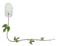 Computer Mouse and Vine Border. A border formed by a computer mouse with a green vine as its cord symbolizing concepts from convergence of digital and green Stock Photo