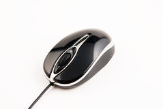 Computer mouse on white background. Black computer mouse on white background Royalty Free Stock Photos