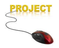 Computer mouse and word Project Royalty Free Stock Image