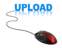 Computer mouse and word Upload Royalty Free Stock Photo