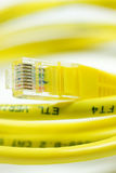 Computer Network Cable. Yellow Computer Network Cable on White background Royalty Free Stock Photography