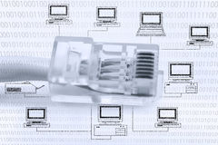 Computer network cable (RJ45) Stock Images