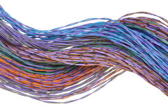Computer network cables Stock Image