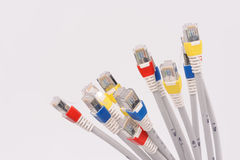 Computer network cables. Over grey background Stock Images