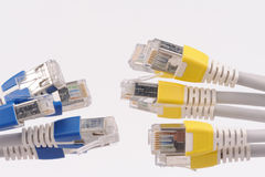 Computer network cables Stock Images