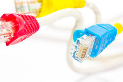 Computer network cables  Royalty Free Stock Photo