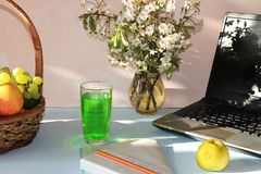 Computer, notebook, fruit in a basket and blooming cherry on a bright table., stock image