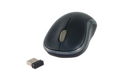 Computer optical wheel mouse Stock Images