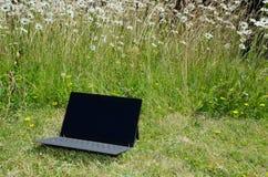 Computer portatile ad un prato inglese con le margherite Immagine Stock Libera da Diritti