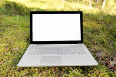 Computer portatile con lo schermo in bianco sul muschio nella foresta Fotografia Stock