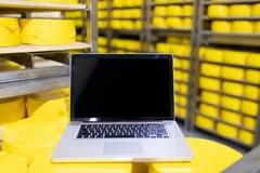 Computer portatile con lo schermo in bianco sulle teste gialle del formaggio vicino su stanza del formaggio immagini stock