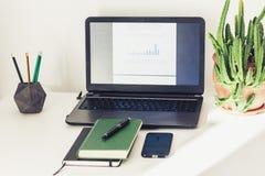 Computer portatile, pila di libri, manuale, pianta del cactus in vaso di argilla nel fondo di affari dell'ufficio per istruzione  immagine stock libera da diritti