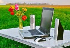 Computer portatile sulla natura Fotografia Stock
