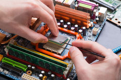 Computer processor chip disassembling close up Stock Images