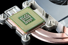 Computer Processor, Heat Sink and Fan Royalty Free Stock Images