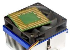 Computer processor on heatsink isolated. On white Stock Image