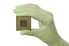 Computer processor in human hand Stock Photos