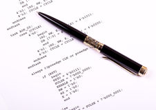 Computer program and pen. Part of the computer program and pen Royalty Free Stock Photography