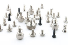 Computer Screws. Royalty Free Stock Photo