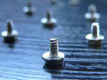 Computer screws Stock Image