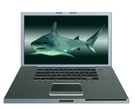 Computer shark Royalty Free Stock Photography