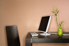 Computer on Table with Bamboo Plant Royalty Free Stock Photography