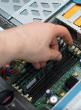 Computer technician installing RAM memory. Stock Images