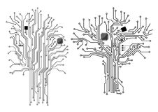 Computer tree with chip and motherboard Royalty Free Stock Image