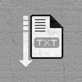 Computer txt file icon. Creative design of computer txt file icon Royalty Free Stock Image