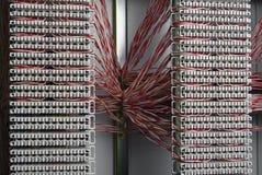 Computerdrähte Lizenzfreie Stockbilder