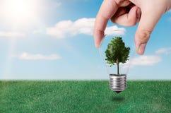 Computererzeugtes Bild Abstrakte Zusammensetzung mit Baum in der Birne Lizenzfreies Stockfoto