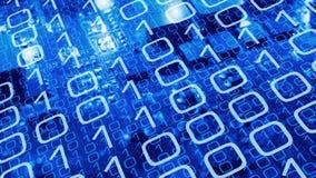 Computerinsect in nieuwe computersspaanders, cyber veiligheidsbedreigingen Stock Afbeeldingen