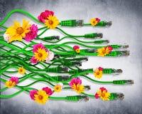 Computerkabels met bloemen Royalty-vrije Stock Fotografie